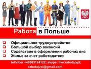 Рабочее приглашение в Польшу,  оформление.