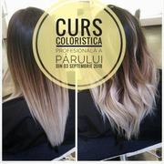 Curs Coloristica profesională a părului